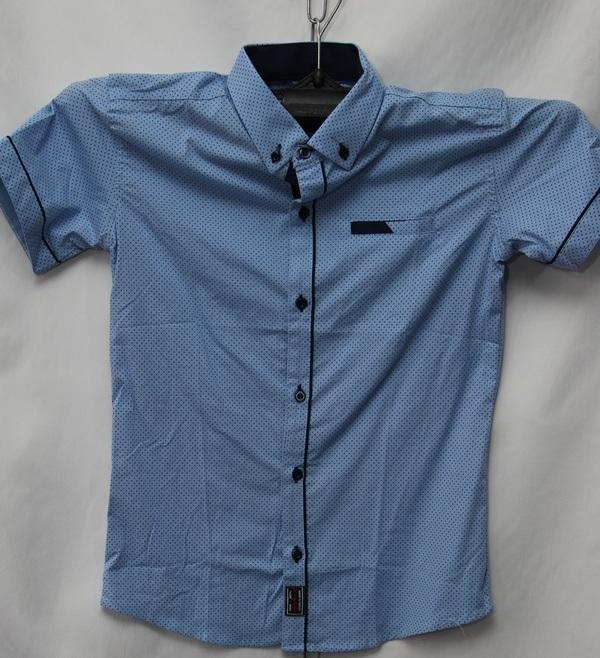 Рубашки детские оптом 10051095 9177-50