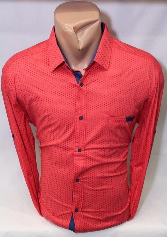 Рубашки PAUL STAR мужскиеТурция оптом 56173984