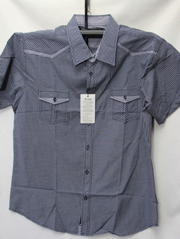 Рубашки мужские Турция оптом 2004523 3636-84