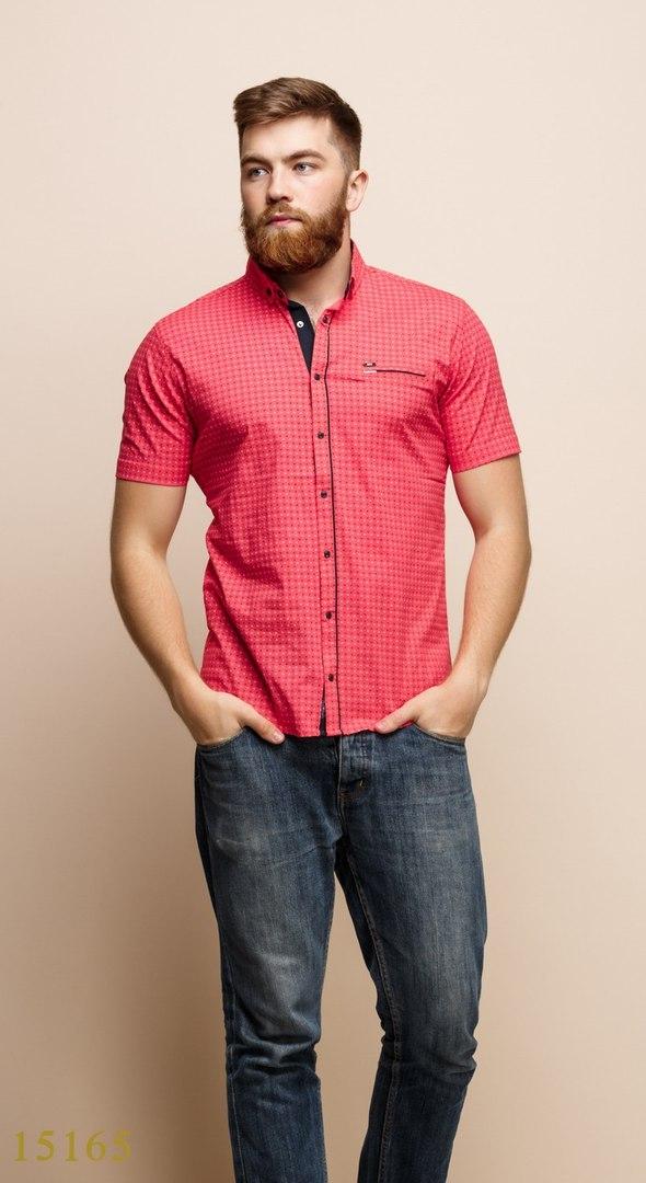 Рубашки мужские Турция оптом  1206133 15165