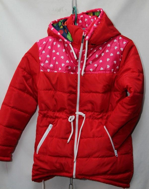 Куртка женская оптом 16035545 5226