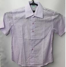 Рубашка для школы оптом (короткий рукав) Китай 28061776 139