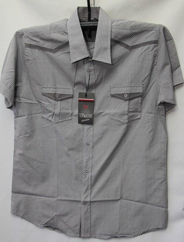 Рубашки мужские Турция оптом 2004523 3636-86
