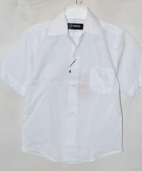 Рубашки детские оптом 04527916 201-К-10