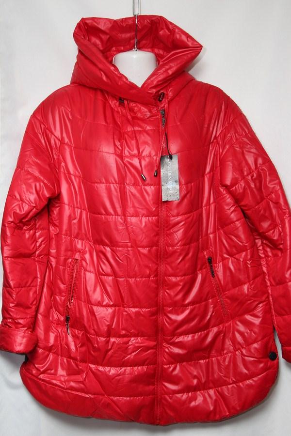 Куртка женская весенняя оптом  20033493 619-1
