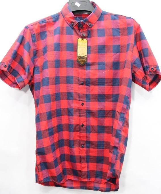 Рубашки мужские оптом 30741285 8-20