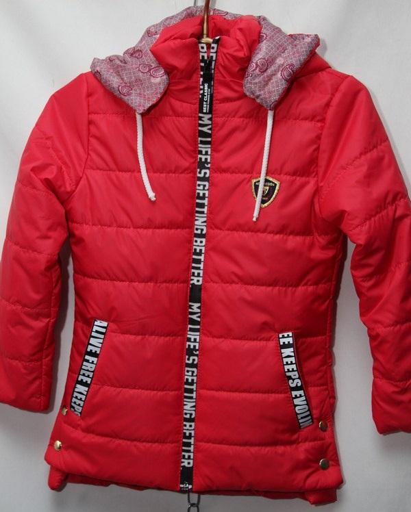 Куртка женская оптом 16035545 5239