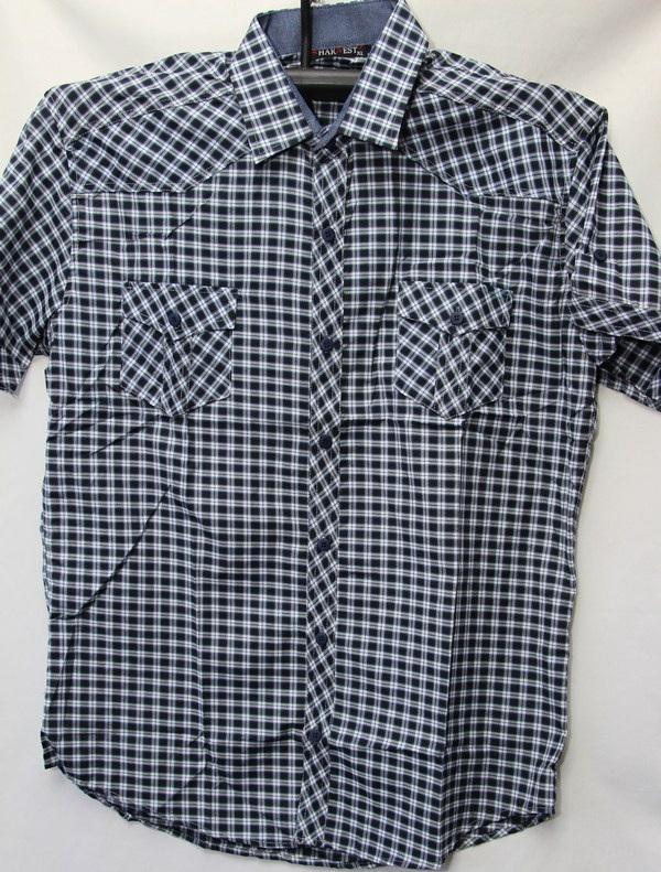 Рубашки мужские Турция оптом 23807145 3636-35