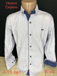 Рубашки подростковые PAUL SEMIH оптом 18240965 02-9