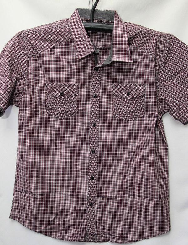 Рубашки мужские Турция оптом 2004523 3636-82