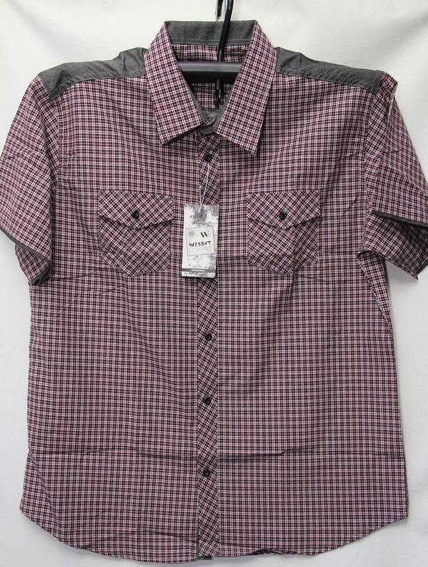 Рубашки мужские Турция оптом 2004523 3636-80