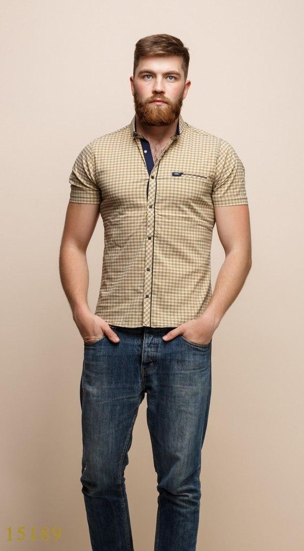 Рубашки мужские Турция оптом  1206133 15189