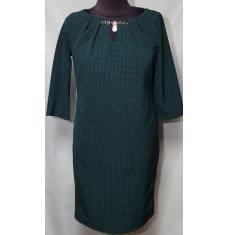 Платье женское батал оптом 231148966 046