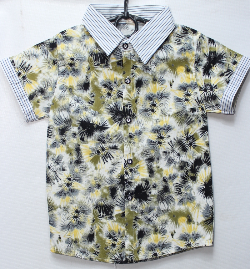 Рубашки детские оптом 01698752 1-24