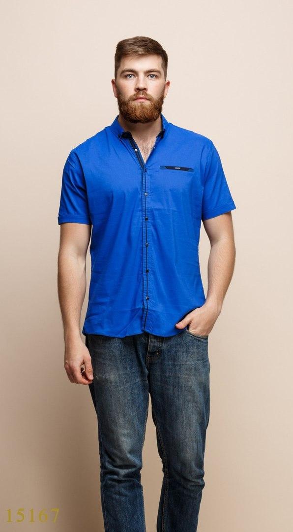 Рубашки мужские Турция оптом  1206133 15167