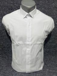 Рубашки мужские PLENTI оптом 68305749    02-14