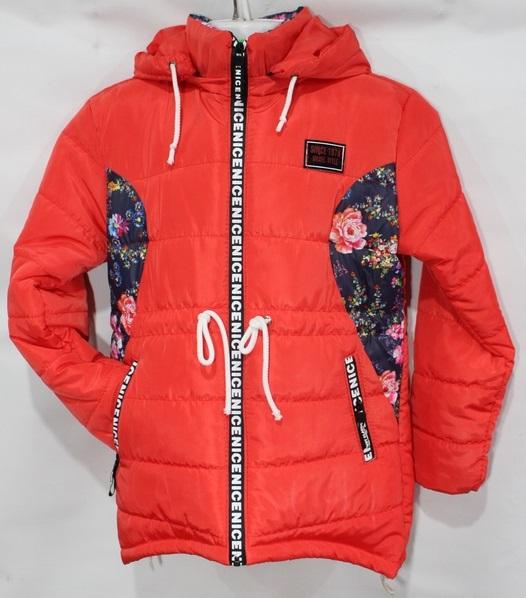 Куртки детские на девочку оптом 41238057 906-1