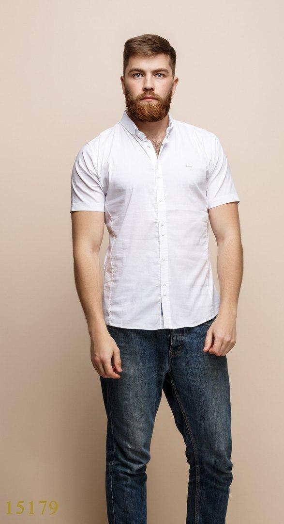 Рубашки мужские Турция оптом  1206133 15179