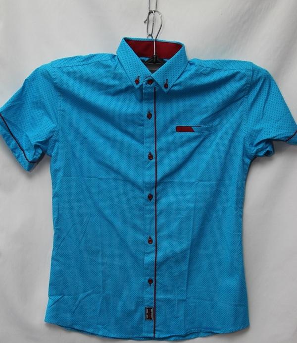 Рубашки детские оптом 10051095 9177-48