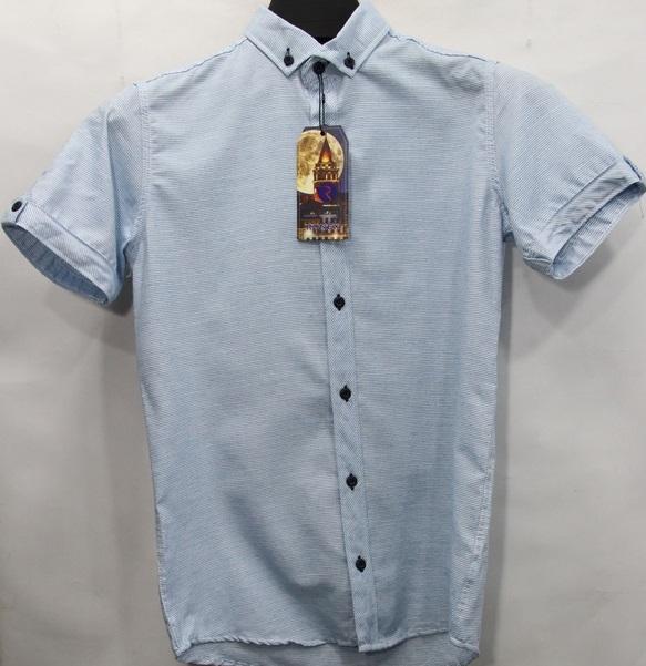 Рубашки мужские оптом 64738920 8-1