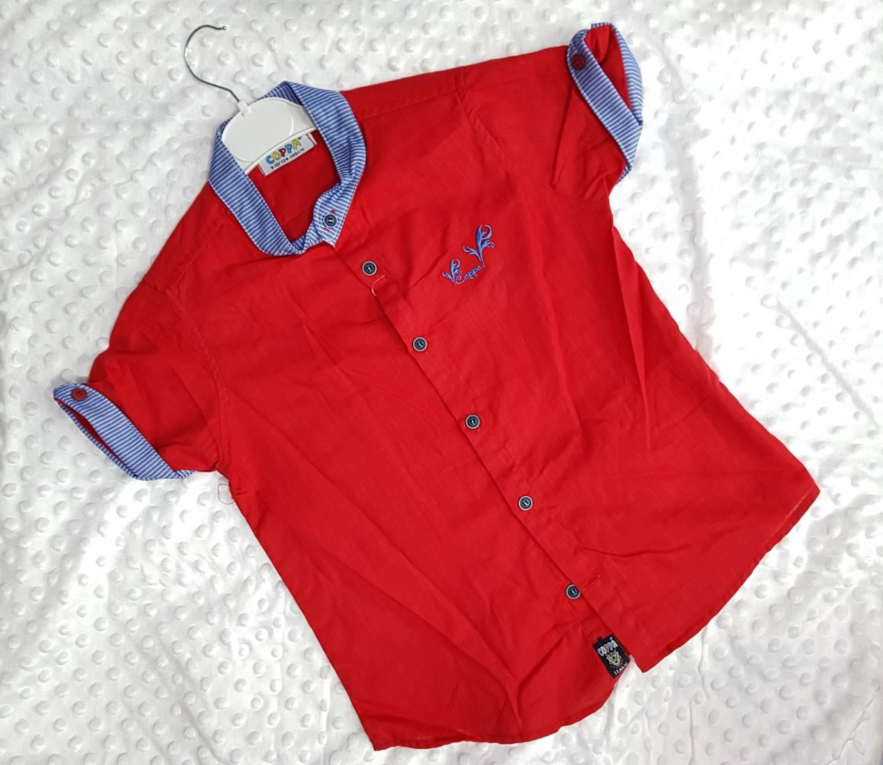 Рубашки детские на мальчика оптом 78062154 7-10