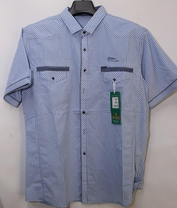 Рубашки  мужские оптом 26015893  А325-101
