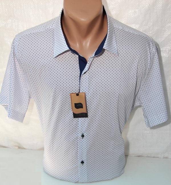 Рубашки мужские Турция БАТАЛ оптом  29064866 13