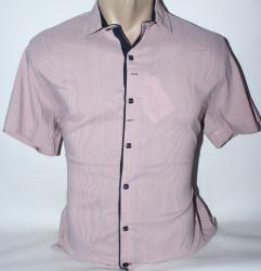 Рубашки мужские RCP оптом 84120653  06-22