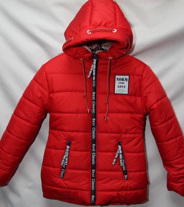 Куртки подростковые оптом 01573296 02-10