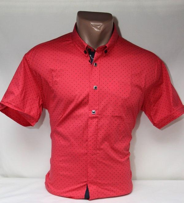 Рубашки мужские оптом 25044471 5057-3