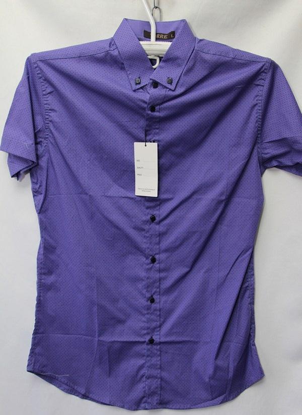 Рубашки мужские Турция оптом 2004523 3636-81