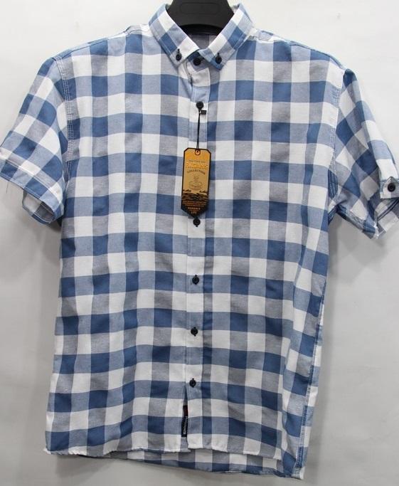 Рубашки мужские оптом 72163859 8-23