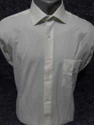 Рубашки мужские PLENTI оптом 91827435    05-65