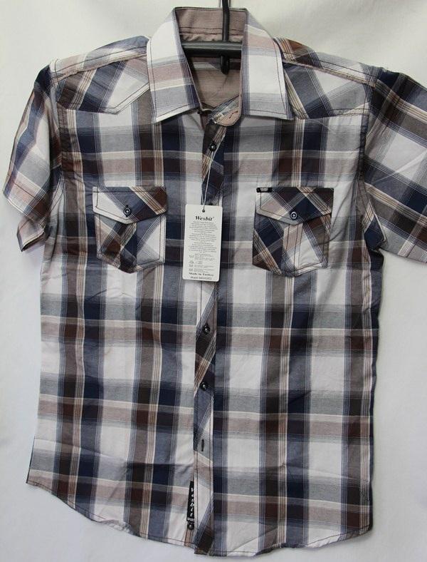 Рубашки мужские Турция оптом 2004523 3636-70