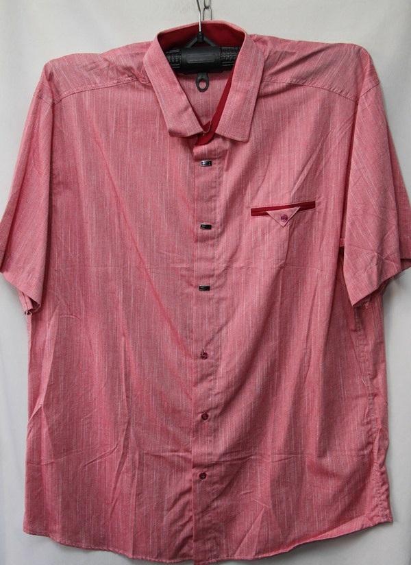 Рубашки мужские оптом  28031095 7888-18