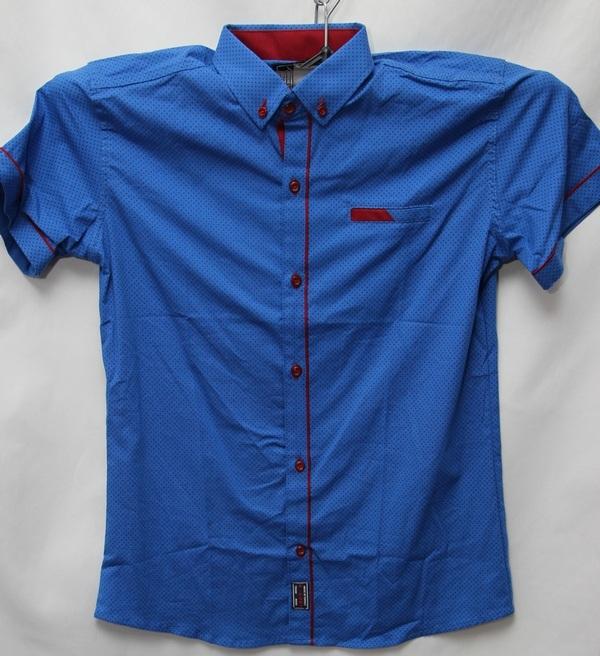 Рубашки детские оптом 10051095 9177-49