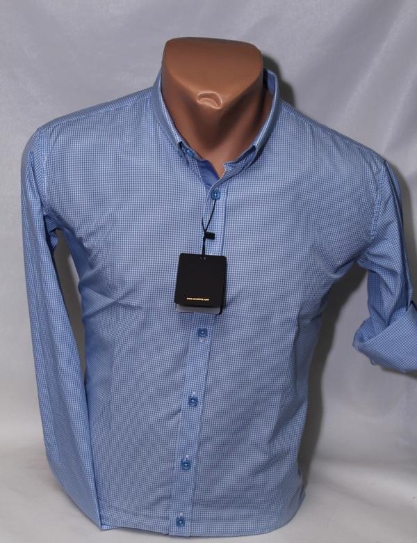 Рубашки подростковые  оптом 19208475 2168-8