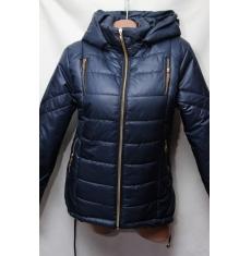 Куртка женская весенняя оптом 2101859 276
