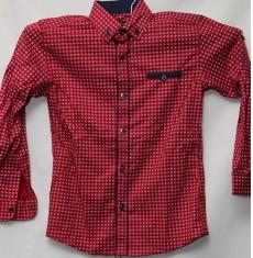 Рубашка подростковая оптом 08021095 6223