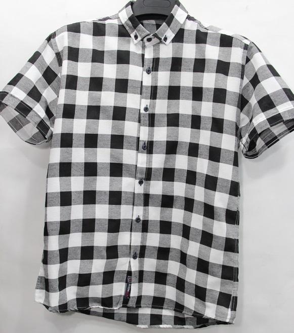 Рубашки мужские оптом 74683521 8-19