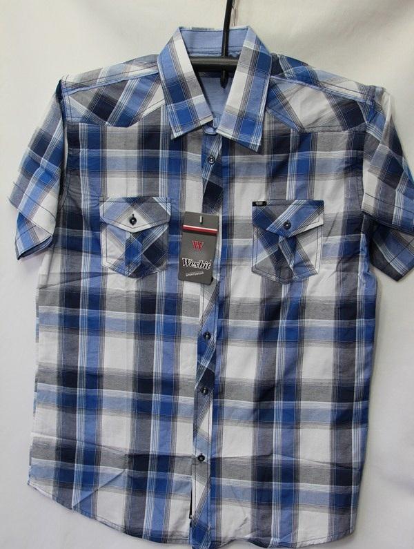 Рубашки мужские Турция оптом 2004523 3636-63