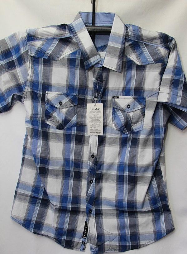 Рубашки мужские Турция оптом 2004523 3636-66