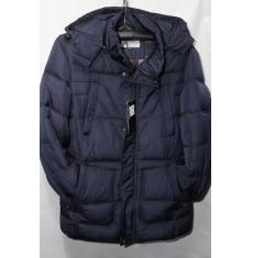 Куртка мужская зимняя оптом 04115543 222