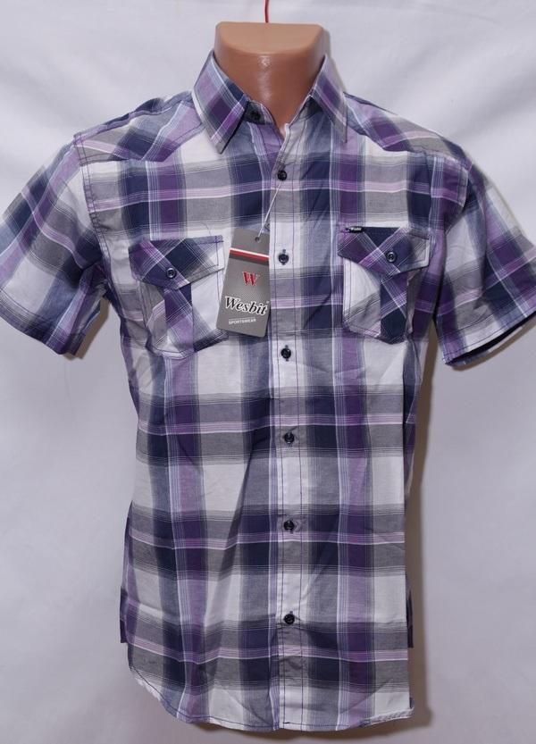 Рубашки мужские оптом 82135964 24