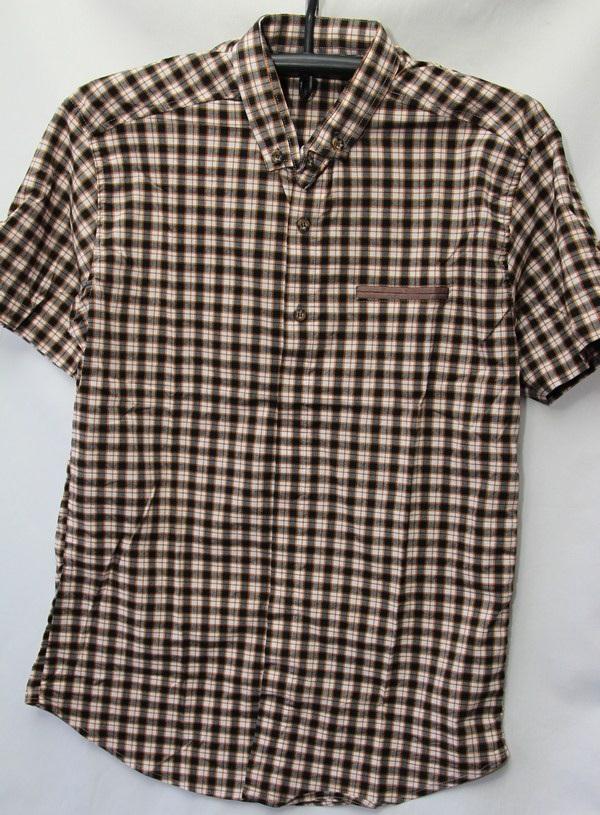 Рубашки мужские Турция оптом 2004523 3636-69
