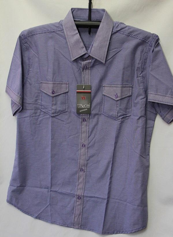 Рубашки мужские Турция оптом 2004523 3636-73