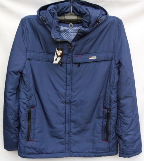 Куртки мужские БАТАЛ синие оптом 01925734 02337-3
