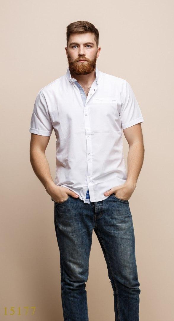 Рубашки мужские Турция оптом  1206133 15177